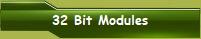 32 Bit Modules